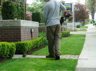 Residental Lawn Mowing - No Contract - Most Yards $30